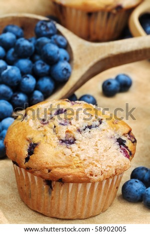 Delicious homemade blueberry muffins with fresh blueberries spilling from a wooden spoon. Extreme shallow DOF. - stock photo