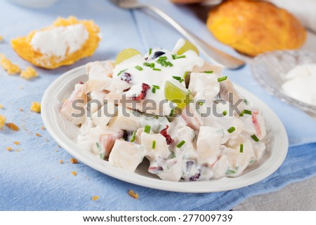 Delicious homemade chicken salad with yogurt, grapes, apples and cranberries on white plate with carrot buns on blue background, Selective focus.  Healthy eating. - stock photo