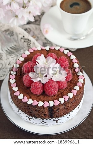Delicious homemade chocolate cake with raspberry garnish . Selective focus. - stock photo
