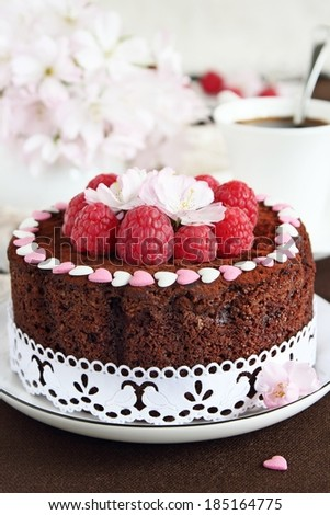 Delicious homemade chocolate cake with raspberry garnish.Selective focus. - stock photo