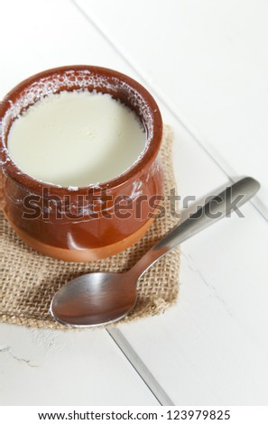 Delicious homemade curd in clay pot made from goat milk - stock photo