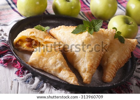 Delicious homemade pie turnover with apples and raisins close-up on a plate. horizontal