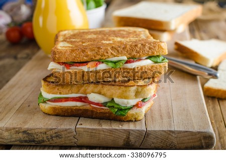Delicious Italian sandwich, chorizo, mozzarella, salad with fresh orange juice - stock photo