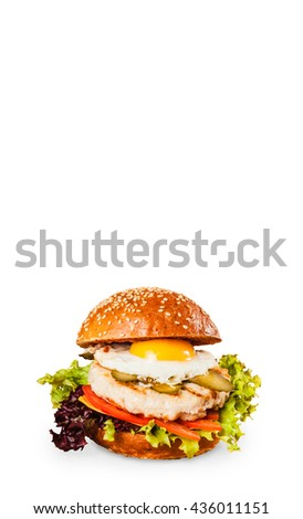 Delicious juicy burger with an egg on white background  - stock photo