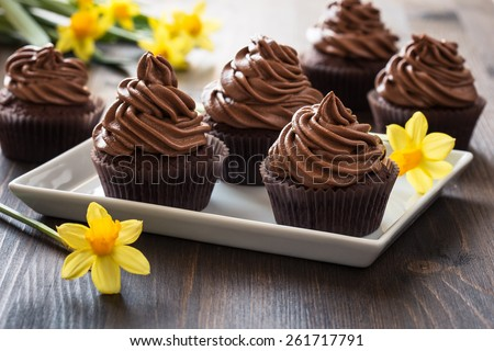 Delicious Mothers day  chocolate cupcakes  with spring flowers - stock photo