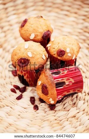 delicious muffins with cranberries - sweet food /shallow DOF/