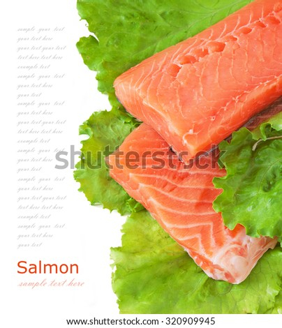 Delicious portion of fresh salmon fillet with salad leaves isolated on white background. Healthy food. Diet concept. Cooking concept - stock photo