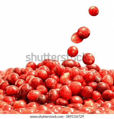 Delicious ripe cranberries falling, isolated over white background - stock photo