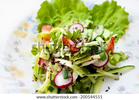 Delicious salad of cucumber and radish with lettuce - stock photo