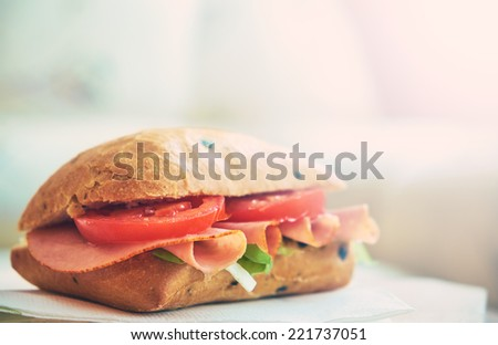 Delicious sandwich - stock photo