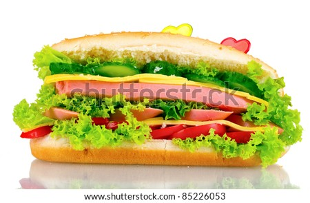 Delicious sandwich isolated on white
