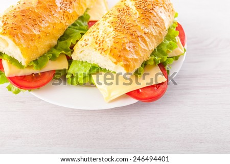 Delicious Sandwiches - stock photo