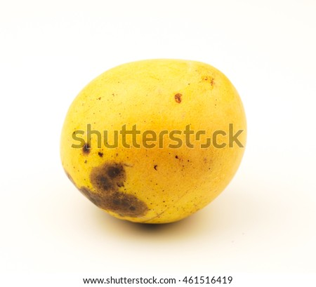 Delicious small Yellow Mango Fruit isolated on white background