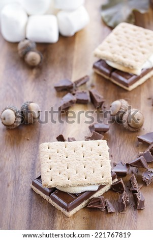 Delicious Smores with chocolate and marshmallows. Extreme shallow depth of field. - stock photo