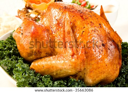Delicious Turkey with dressing, vegetables and gravy