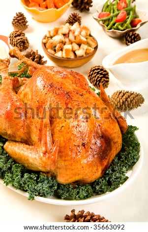 Delicious Turkey with dressing, vegetables and gravy - stock photo