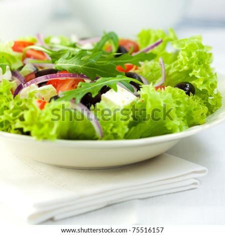 Delicious vegetable salad with feta cheese and olives - stock photo