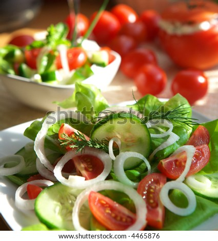 Delicious vegetable salad with tomato, onion and cucumber - stock photo