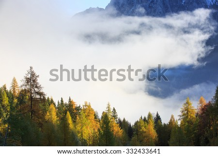 Dense coniferous autumn forest in magical morning mist, with dawning sun rays shining and high mountains in background. Seasons changing, weather, fog, unique sunlight concept, textured background.  - stock photo