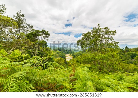 Dense rainforest and stunning landscape in Toraja Area, South Sulawesi, Indonesia. Panoramic view from above with dramatic clouds. - stock photo