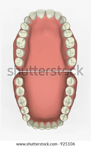 Dental Chart Stock Images, Royalty-Free Images & Vectors ...