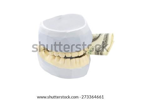 Dental phantom, dentures isolated on white background with money between jaws - stock photo