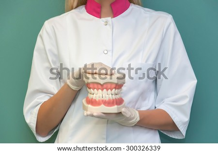Dentist shows a mold of teeth