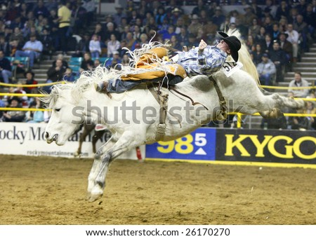 DENVER, COLORADO - JANUARY 25:  PRCA Rodeo Cowboy, Tim Shirley of Colorado, wins the prestigious National Western Stock Show's Bareback Title on Jan. 25, 2009 in Denver, Colorado. - stock photo