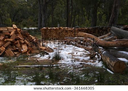 DERWENT BRIDGE, AUSTRALIA - NOVEMBER 26 : Climate change weather event of unseasonal snow in summer accross Tasmania  November 26, 2015 in Derwent Bridge, Australia - stock photo