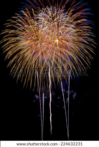Description:  Colorful  fireworks with gold, red, blue, and white colors Title:  Colorful fireworks.