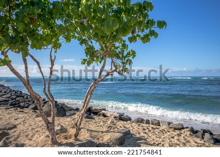 Description:  Relaxing calm morning at the beach in Hawaii. Title:  Hawaiian seascape morning. - stock photo