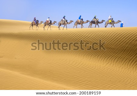 Desert and camel caravan - stock photo
