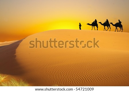 Desert and caravan - stock photo