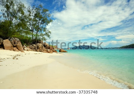 Desert beach and pine trees in Curieuse island - stock photo