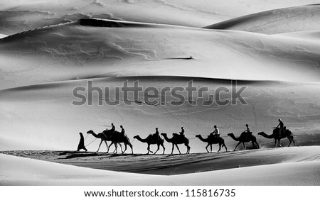 Desert caravan - stock photo