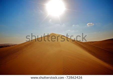 Desert dune - stock photo