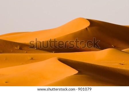 Desert dunes glowing in the sunset light - stock photo