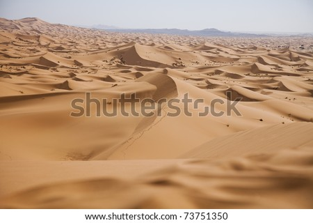 Desert dunes in Morocco - stock photo