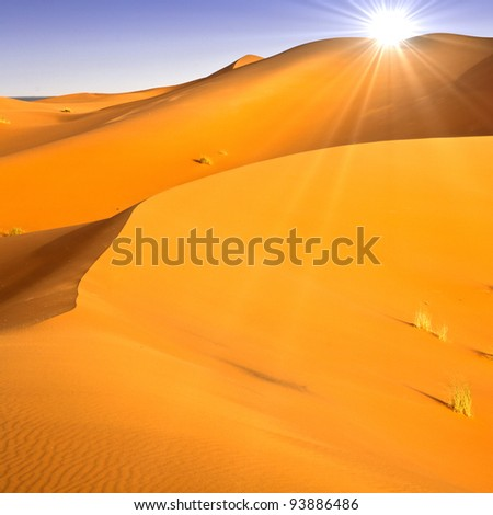 Desert dunes landscape with sun flare on blue sky.