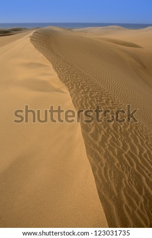 Desert dunes sand in Maspalomas Oasis Gran Canaria at Canary islands - stock photo