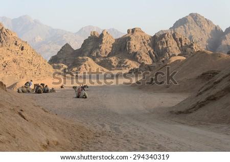 Desert in Africa. ATV safaris. Excursions in Egypt. - stock photo