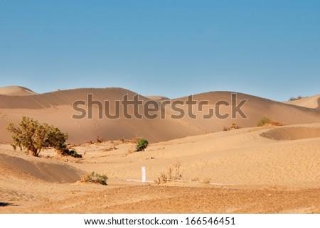 Quicksand desert
