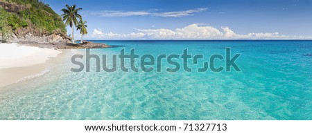 Desert island panorama with palm trees on the beach - stock photo