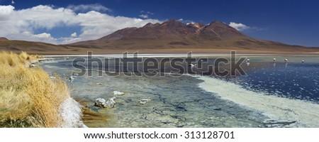 Desert lake Laguna Cañapa on the Altiplano of Bolivia on a sunny day. - stock photo