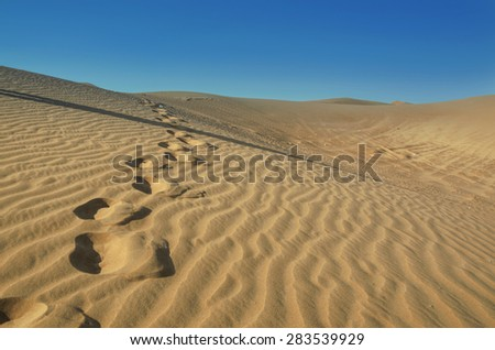 Desert landscape. Background arid landscape. Dunes of the desert. Waves sand on top of the dunes. Sand desert. Dunes sunset landscape. Adventure trip to desert nature.Footprints in the Sand