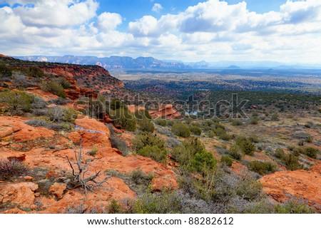 Desert landscape in Arizona - stock photo