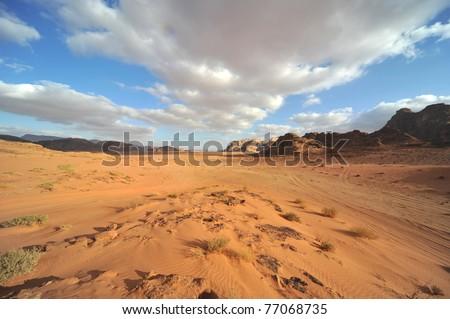 Desert landscape - sand dune - nature background - stock photo