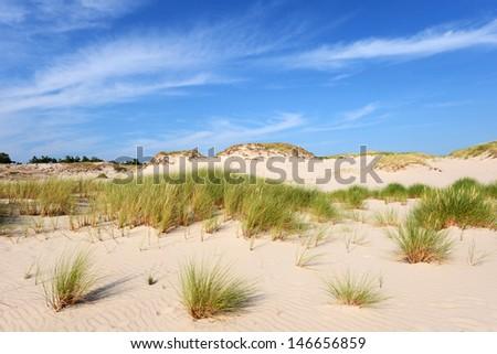 Desert landscape, Slowinski National Park near Leba, Poland - stock photo