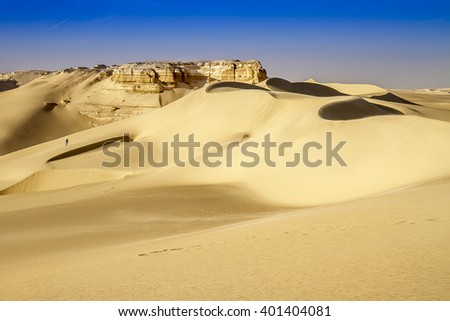 Desert landscape with a figure wandering at the distance - stock photo