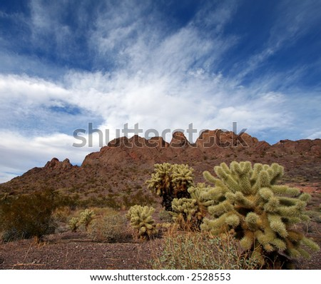 Desert Landscape with Cactus, Mountains and Blue Sky - stock photo